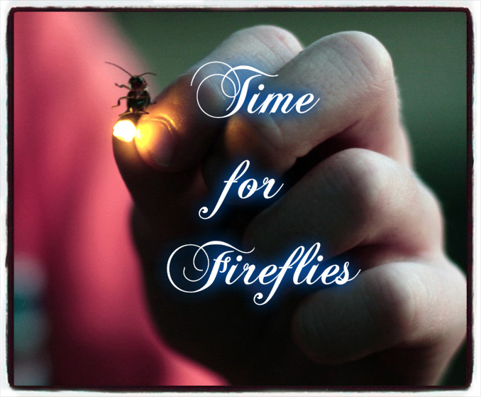 fireflies blog